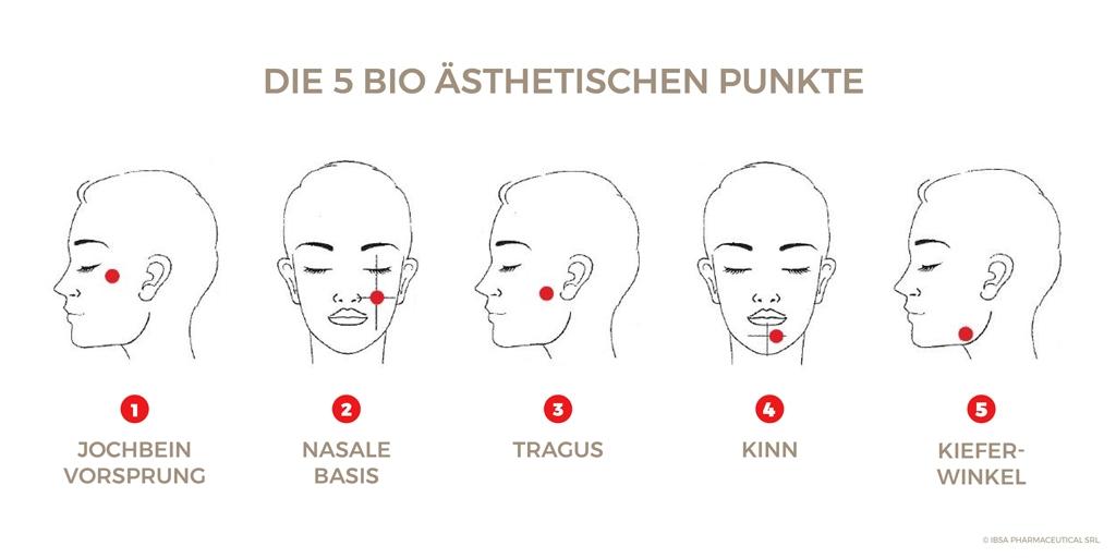 Die 5 bioästhestischen Punkte